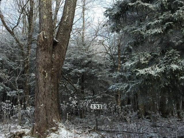 NWR131 N NORTH WEST RIDGE RD, SNOWSHOE, WV 26209