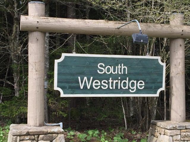 SWR63 SOUTH WEST RIDGE ROAD, SNOWSHOE, WV 26209
