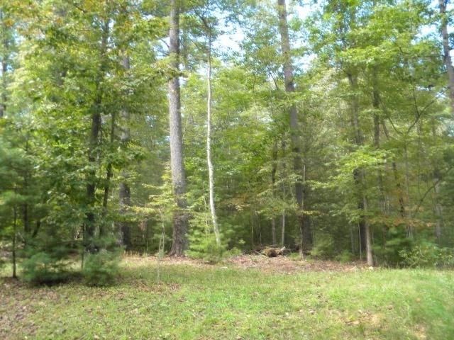 Building lot with 4.23 acres. Located in the beautiful Sunset Trace subdivision. wooded lot. Paved roads.  This lot could be purchase with lot 10 and have about 10 acres to build your dream house. Purchase now and get your home started.