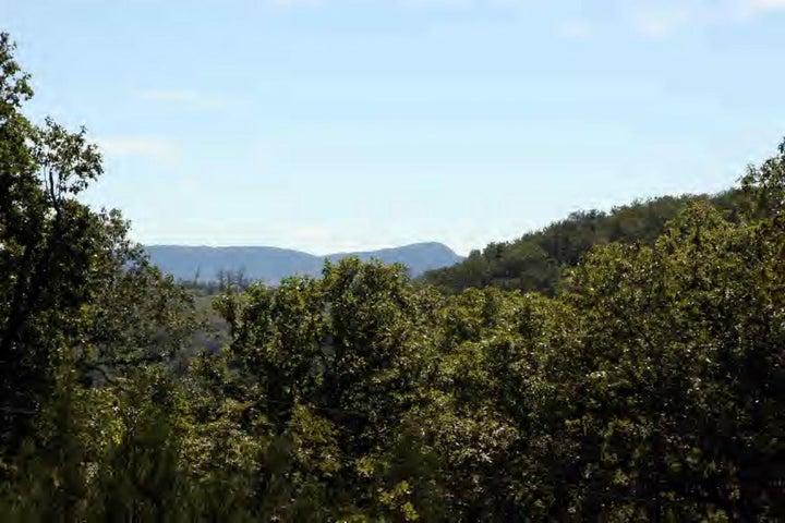 Farm/Ranch/Land for sale – 26     Marble Falls, AR