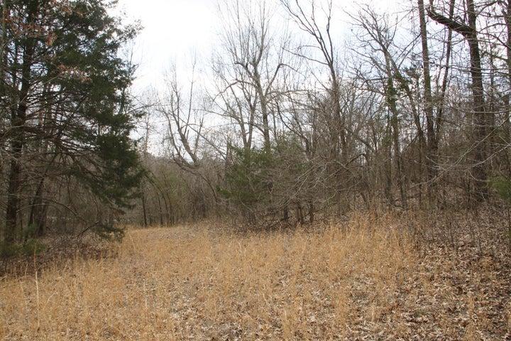 Lots and Land for sale – Lot 23  Dogwood Drive  Omaha, AR