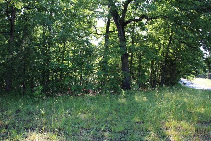 Lots and Land for sale – 00 N Hwy 14   Yellville, AR