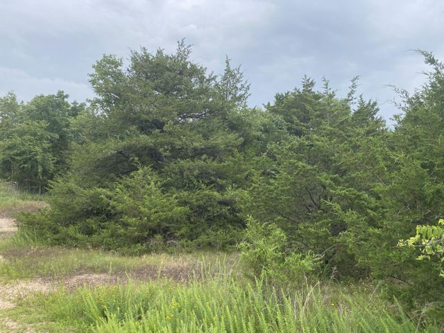 Ricks Drive - Lot 26, Harrison, AR 72601
