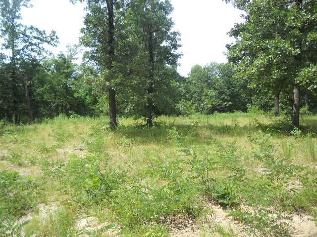 Lots and Land for sale –   Pinnacle Mountain Road   Western Grove, AR