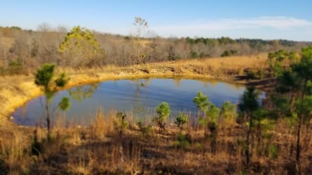 Lots and Land for sale –   Chinquapin Road  Pindall, AR