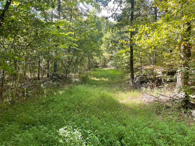 Lots and Land for sale – 0000  McElroy Gap Road   Jasper, AR