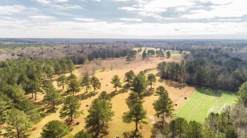 162 Acres Hwy 598, Seminary, MS 39479