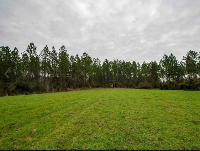 591 Scruggs Rd., Sumrall, MS 39482