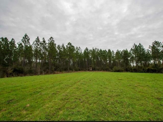 587 Scruggs Rd., Sumrall, MS 39482
