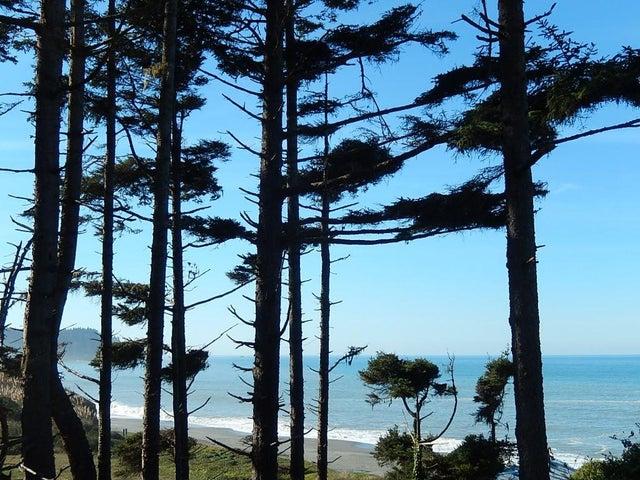 62 Beach Drive, Big Lagoon, CA 95570