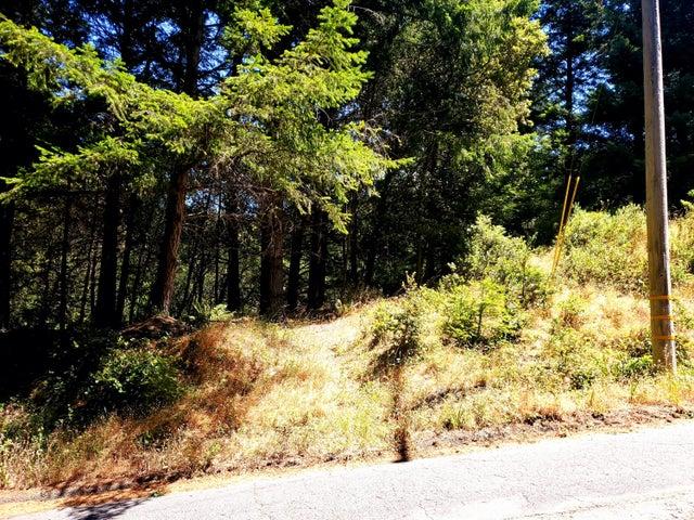211 Beach Road, Shelter Cove, CA 95589