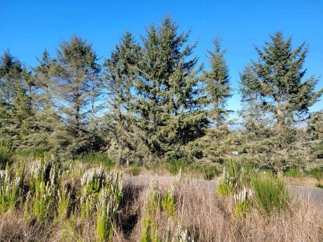 28 Blue Spruce Drive, Humboldt Hill, CA 95503