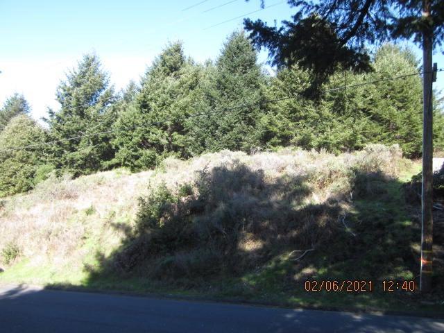 105 Debbie Lane, Shelter Cove, CA 95589
