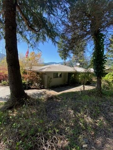 590 Forest View Drive, Willow Creek, CA 95573