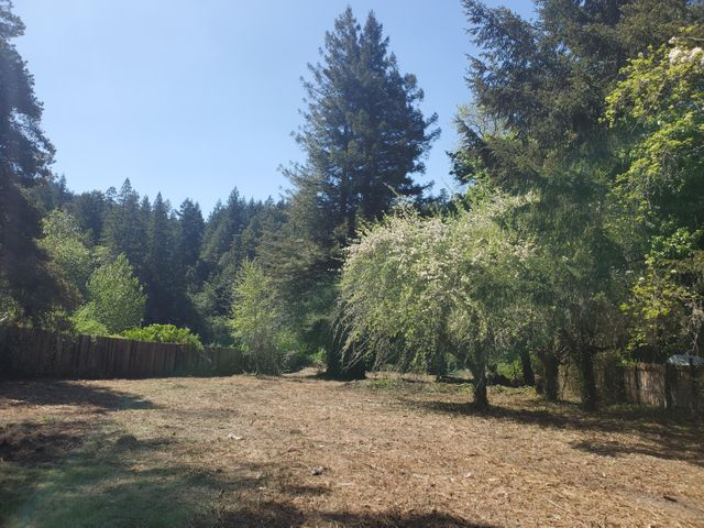 541 Boy Scout Road, Myers Flat, CA 95554