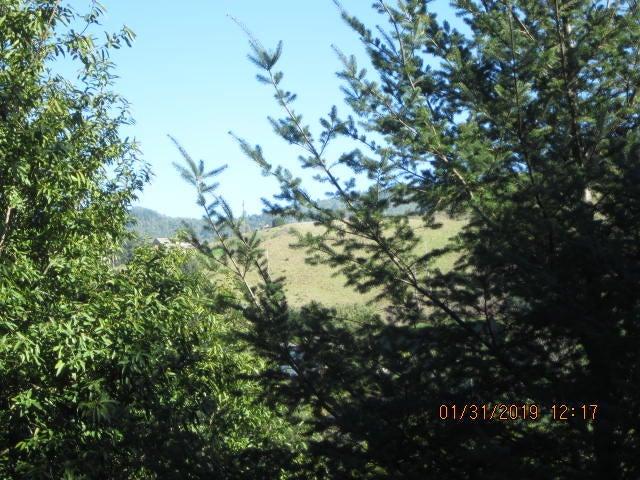 437 Redwood Road, Shelter Cove, CA 95589