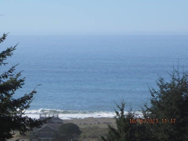 295 Bambi Drive, Shelter Cove, CA 95589