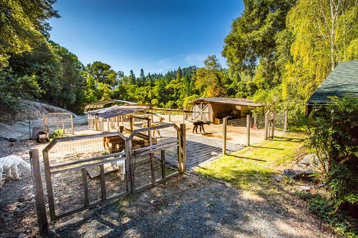 3319 campbell ridge road willow creek ca property sue forbes for Humboldt swimming pool schedule