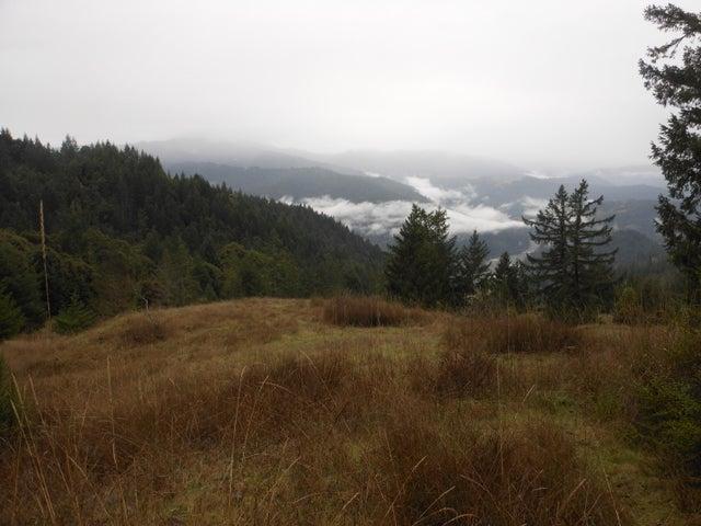 975 Springs Canyon Lane, Phillipsville, CA 95559