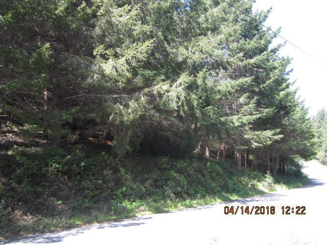166 & 178 Redwood Road, Whitethorn, CA 95589