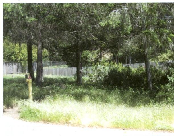 9 Green Court, Whitethorn, CA 95589