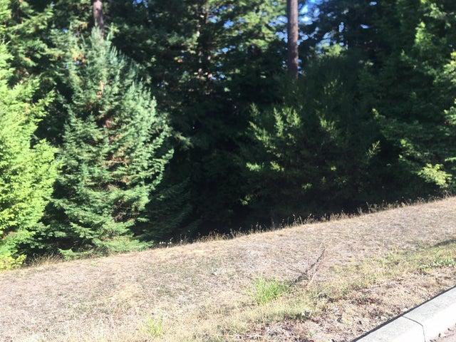 4372 Forest Hills Drive, Fortuna, CA 95540