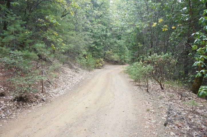 1130 Black Bear Road, Weaverville, CA 96093