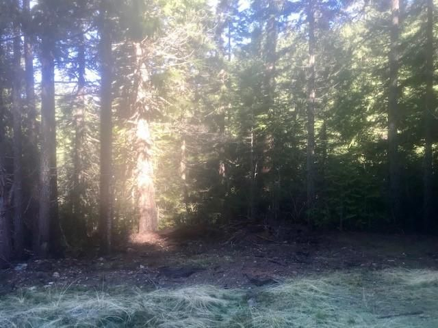 +/-160 Acres Cedar Creek None, Blue Lake, CA 95525