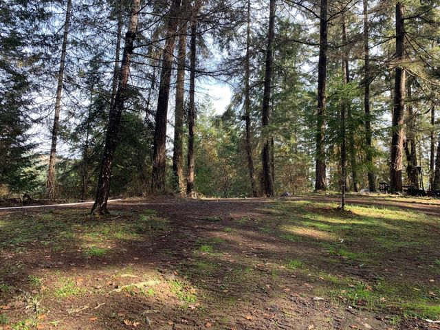 +/-40 Acres Little Larabee Creek None, Bridgeville, CA 95526