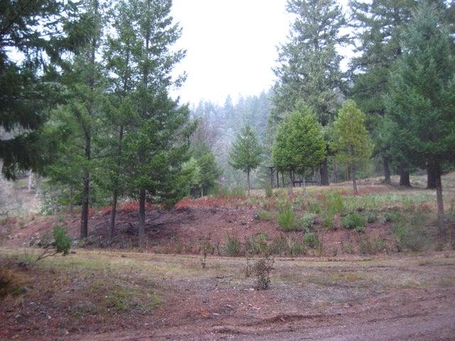 0241 Blair Creek Road, Bridgeville, CA 95526