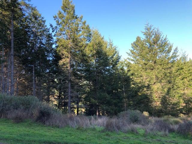 509 Humboldt Loop Road, Whitethorn, CA 95589