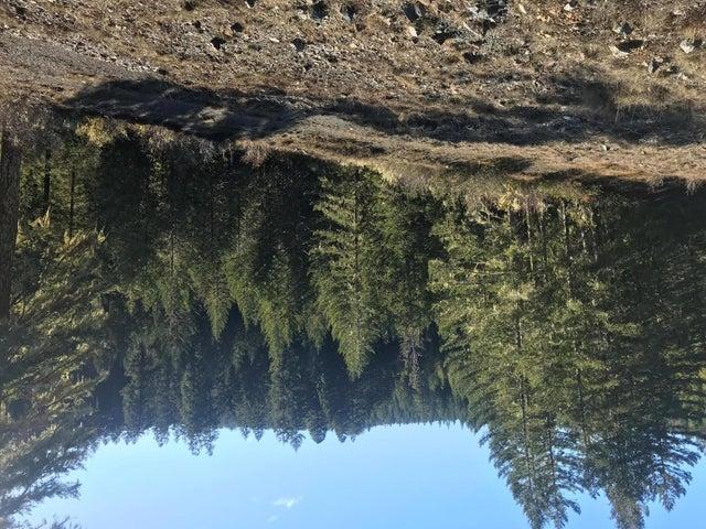 1000 Ruiz Canyon Drive, Other, CA 99999