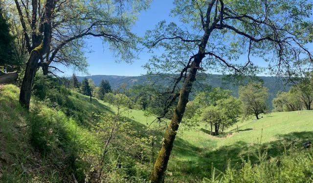 0000 Sabertooth Road, Blue Lake, CA 95525