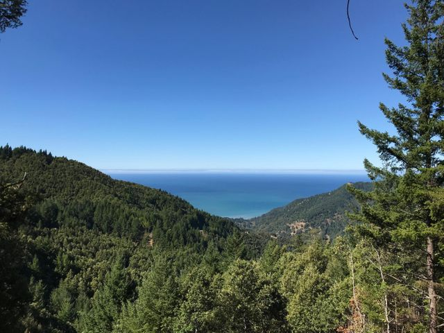 186 Sea View Road, Whitethorn, CA 95589