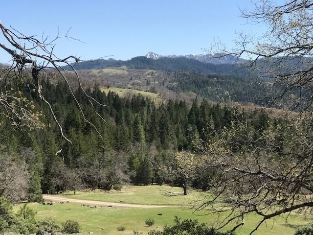 0000 Buck Mountain None, Bridgeville, CA 95526