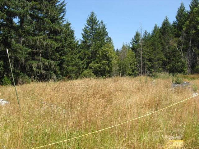 5355 Rancho Sequoia Drive, Alderpoint, CA 95511