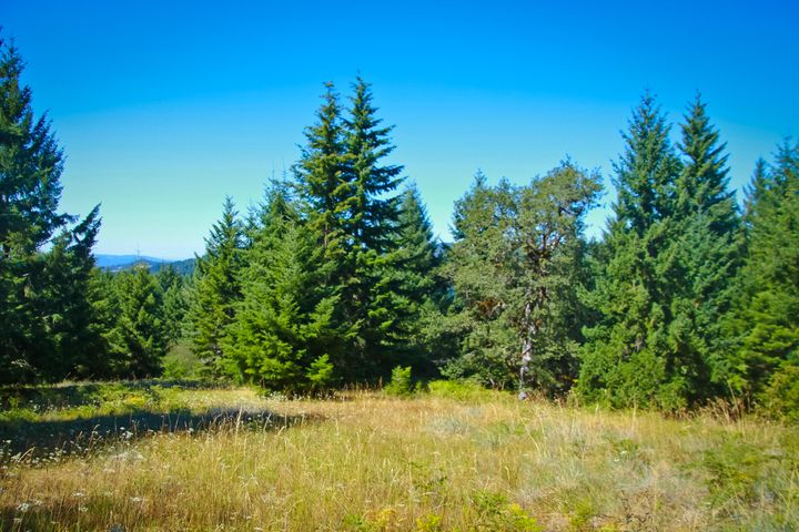 41 Acres Titlow Hill Road, Blue Lake, CA 95525