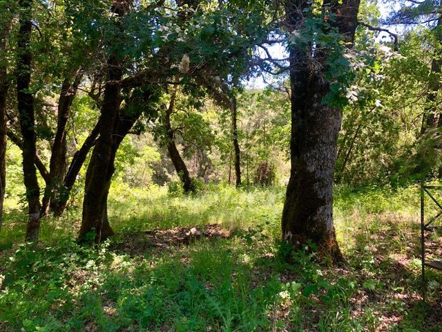 +/-.89 Acres Highway 299 None, Willow Creek, CA 95573