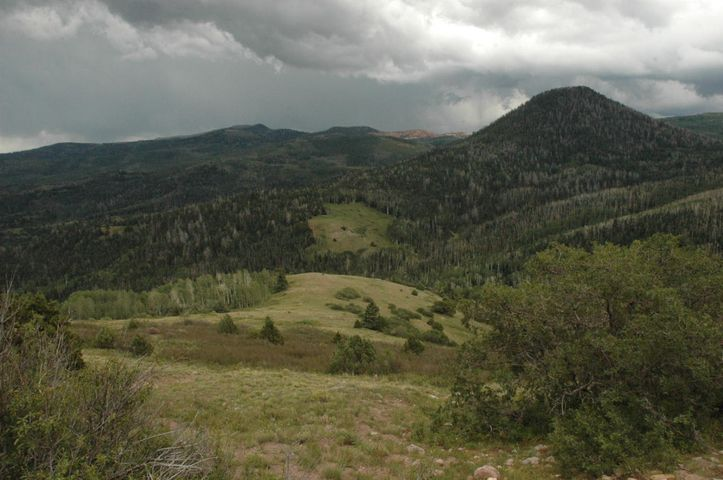 Summit Mountain Rd, Summit UT 84772