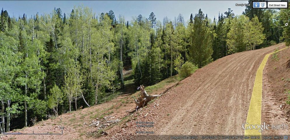 601 POPPY CT, Lot 11, Brian Head, UT 84719