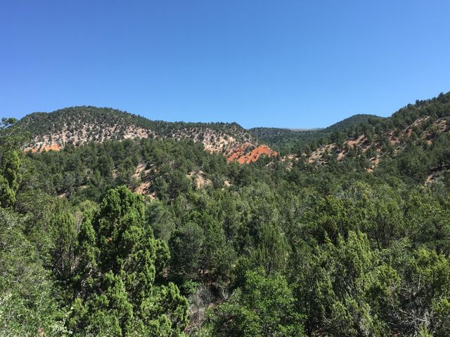 520 acres Forest Rd 029 near New Harmony, Cedar City, UT 84720