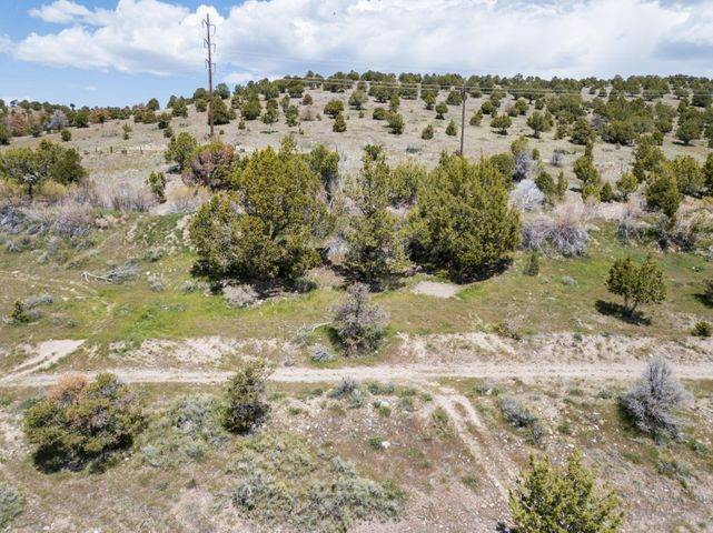 Lot 2 Canyon Breeze Estates, Beaver UT 84713