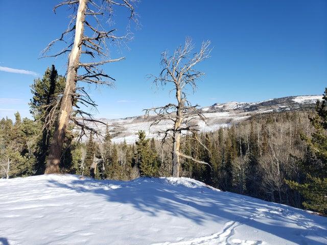 Navajo Trail, Brian Head UT 84719