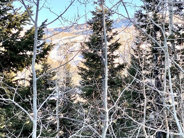 N/A Hunter ridge, Brian Head UT 84719