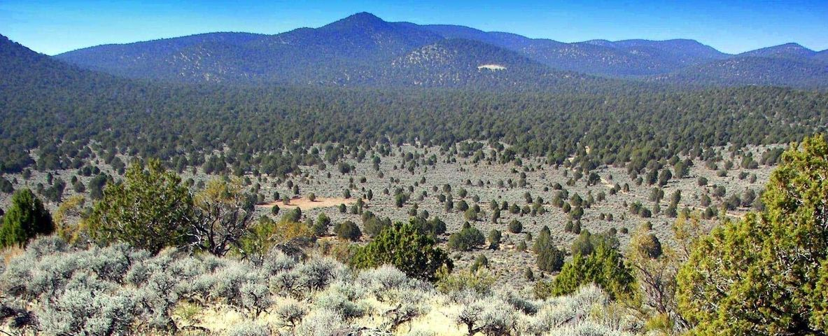 60 Acres off of Studhorse, Modena UT 84753