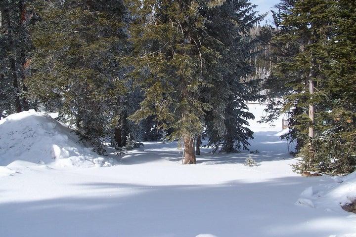 734 S Snowflake, Brian Head UT 84719