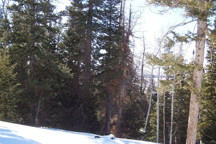 1277 N Aspen, Brian Head UT 84719