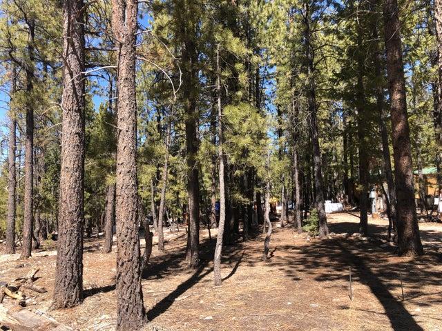 980 Spruce Dr, Duck Creek Village UT 84762