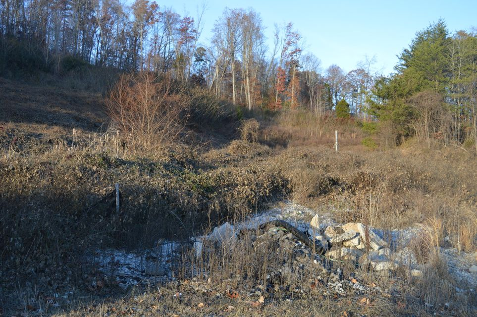3.52 Acres with 397.5 of road frontage. Currently zoned residential, but will go commercial. Close to Oak Ridge & Clinton, and the interstate is close too. Possible 2nd entrance off Old Emory Rd. TVA land across the street, all vacant. Possible retail space or strip mall or industrial.