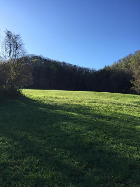 Beautiful 43 acres located on Kanott Lane just minutes from Knoxville. This land has unlimited potential, property offers both pasture and wooded acreage. Call today to set up a private showing.